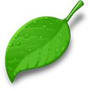 Rayne Evolution Eco Friendly
