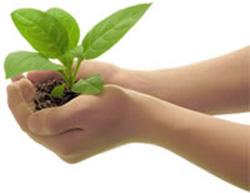 Rayne Smart Eco Friendly
